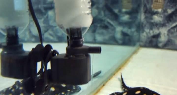Akuarium Surface Skimmer